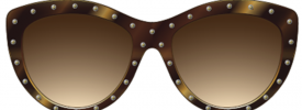 Alexander McQueen AM 0056S Sunglasses
