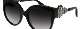 Alexander McQueen AM 0061S Sunglasses