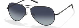 Polaroid Sunglasses PLD 1006/S