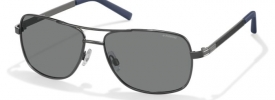 Polaroid Sunglasses PLD 2029/S