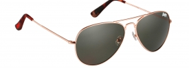 Superdry SDS HUNTSMAN Sunglasses