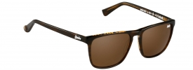 Superdry SDS ICHI Sunglasses