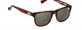 Superdry SDS NI Sunglasses