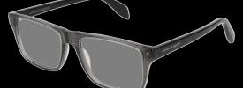 22dffbeca6 Alexander McQueen AM 0147O Prescription Glasses