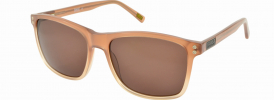Barbour BIS034 Sunglasses