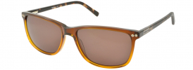 Barbour BS065 Sunglasses