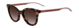 Hugo Boss Hugo HG 1043/S Sunglasses