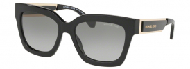 Michael Kors MK 2102 BERKSHIRES Sunglasses