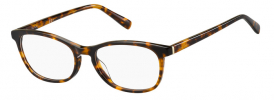 Pierre Cardin P.C. 8488 Prescription Glasses