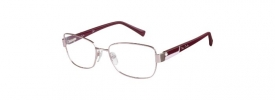 Pierre Cardin P.C. 8820 Prescription Glasses