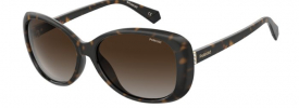 Polaroid PLD 4097S Sunglasses
