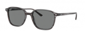 Ray-Ban RB 2193 LEONARD Sunglasses