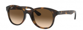 Ray-Ban RB 4203 Sunglasses