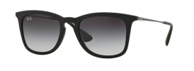 Ray-Ban RB 4221 Sunglasses