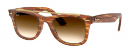Ray-Ban RB 4540 WAYFARER Sunglasses