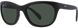 Ray-Ban RB 4216 Sunglasses
