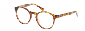 Superdry SDO Goro Prescription Glasses