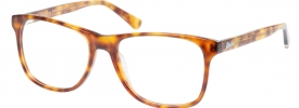 Superdry SDO Paterson Prescription Glasses