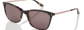 Ted Baker 1416 TALIA Sunglasses