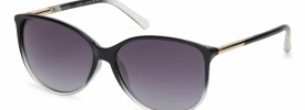 Ted Baker 1495 RAVEN Sunglasses