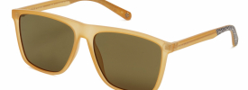 Ted Baker 1502 WILLIS Sunglasses