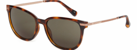 Ted Baker 1521 CALI Sunglasses