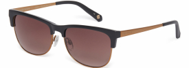 Ted Baker 1528 DALTON Sunglasses