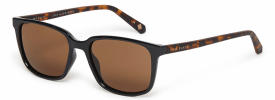 Ted Baker 1529 FARLEY Sunglasses
