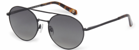Ted Baker 1531 WARNER Sunglasses