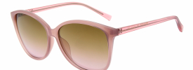Ted Baker 1566 METTA Sunglasses