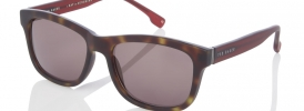 Ted Baker TB 1405 Sunglasses