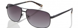 Ted Baker TB 1408 Sunglasses