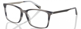 Ted Baker TB 8153 Discontinued 18975 Prescription Glasses