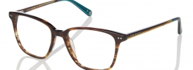 Ted Baker TB 8144 Prescription Glasses