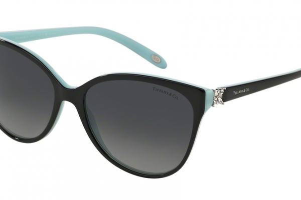 Tiffany & Co TF 4089B Sunglasses