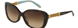 Tiffany & Co TF 4106B Sunglasses