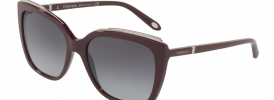 Tiffany & Co TF 4135B Sunglasses