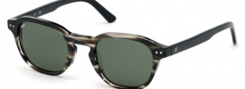 Web Eyewear WE 0250 Sunglasses